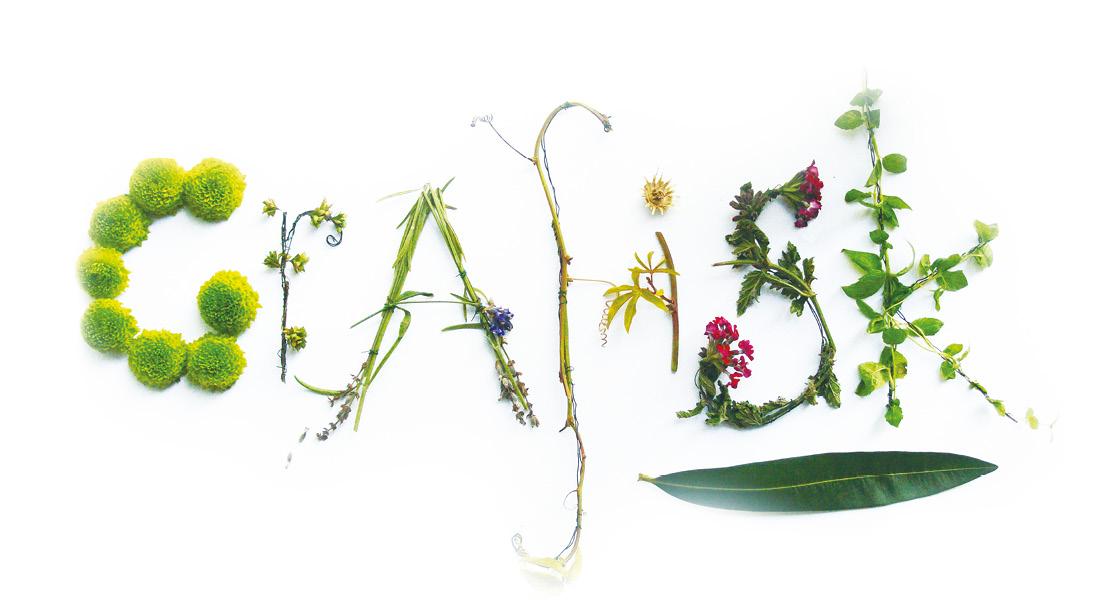 organisk-typografi-blomster
